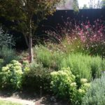 LawryBrosGardening_Residential_Garden_Services
